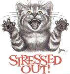 stressed-cats